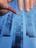 Examining DNA Sequence Photographic Print by Sinclair Stammers