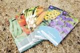Seed Packs Reprodukcja zdjęcia autor Johnny Greig