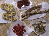 Traditional Chinese Medicines Photographic Print by Sheila Terry