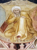 Averroes, Islamic Physician Photographic Print by Sheila Terry