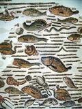 Roman Mosaic Fotoprint van Sheila Terry