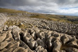 Limestone Pavement, Yorkshire Photographic Print by Bob Gibbons