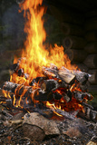 Fuego Láminas por Bjorn Svensson