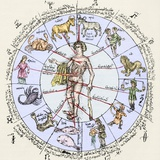 Medical Zodiac, 15th Century Diagram Premium Photographic Print by Sheila Terry