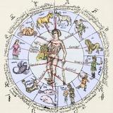 Medical Zodiac, 15th Century Diagram Lámina fotográfica por Sheila Terry