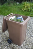 Plastic Bin for Domestic Green Waste Photographic Print by Sheila Terry