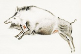 Cave Painting of a Boar, Artwork Posters by Sheila Terry