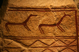 Nordic Petroglyph Photo by Bjorn Svensson