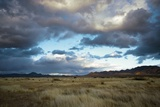 Grasslands Near Portal Photographic Print by Bob Gibbons