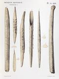 1863 Lartet Prehistoric Symbolic Carving Prints by Paul Stewart