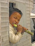 Boy Eating a Sugar Cane Print by Bjorn Svensson