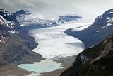 The Saskatchewan Glacier, Canada Posters by Bob Gibbons