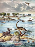 1888 Color Lithograph Jurassic Solnhofen Photo by Paul Stewart