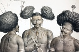 1827 New Guinea Tribal Warriors Prints by Paul Stewart