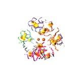 Insulin Molecule, Computer Artwork Fotografisk tryk