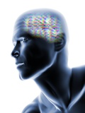Human Head with EEG Brainwaves Photographic Print