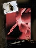 Surgery, Conceptual Artwork Photographic Print by Miriam Maslo