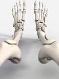 Skeleton's Feet, Artwork Fotografisk trykk av David Mack