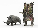 Rhino And Pentaceratops Dinosaur Photographic Print by Walter Myers
