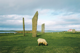 Standing Stones of Stenness, Orkney Islands Prints by Michael Marten