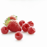 Summer Berries Premium Photographic Print by David Munns