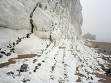 Chalk Cliffs Photographic Print by Michael Marten