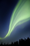 Aurora Borealis In Alaska Prints by Chris Madeley