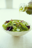 Leaf Salad with Olive Oil Photographic Print by David Munns