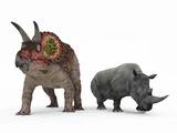 Triceratops Dinosaur And Rhino Photographic Print by Walter Myers
