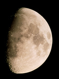 Gibbous Moon In the Night Sky Photographic Print by Chris Madeley