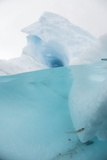 Antarctic Iceberg with Krill, Split View Photographic Print by Louise Murray