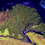 Lena River Delta, Russia Photographic Print by  NASA