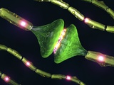Synapses, Artwork Print by David Mack