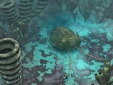 Trilobite on a Seabed, Artwork Photographic Print by Walter Myers