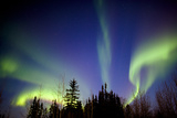 Aurora Borealis In Alaska Photo by Chris Madeley