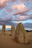 Limestone Pinnacles At Dusk, Australia Photographic Print by Chris Martin-Bahr
