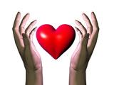 Hands Holding Heart Premium Photographic Print by David Mack