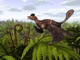 Microraptor Dinosaur, Artwork Photo by Walter Myers