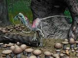 Compsognathus Dinosaur, Artwork Affiches par Walter Myers