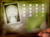 Ginkgo In Medicine Prints by Miriam Maslo
