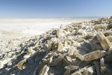 Selenite Crystals on a Dried Lake Bed Photographic Print by Louise Murray