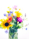 Vase of Summer Flowers Photographic Print by Maria Mosolova