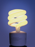 Energy-saving Light Bulb Photographic Print by Cordelia Molloy