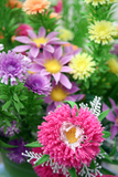 Chrysanthemum And Mixed Flowers Photographic Print by Chris Martin-Bahr