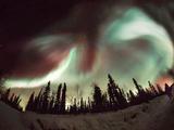 Aurora Borealis Photographic Print by Chris Madeley