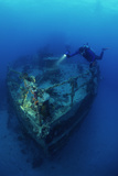 Diver on a Wreck Photographic Print by Alexis Rosenfeld