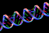 DNA Helix Prints by  PASIEKA
