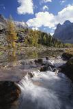 Stream Rapids Photographic Print by David Nunuk