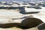 Gobi Desert Posters by Ria Novosti