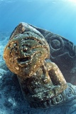 Submerged Statue Photo by Alexis Rosenfeld